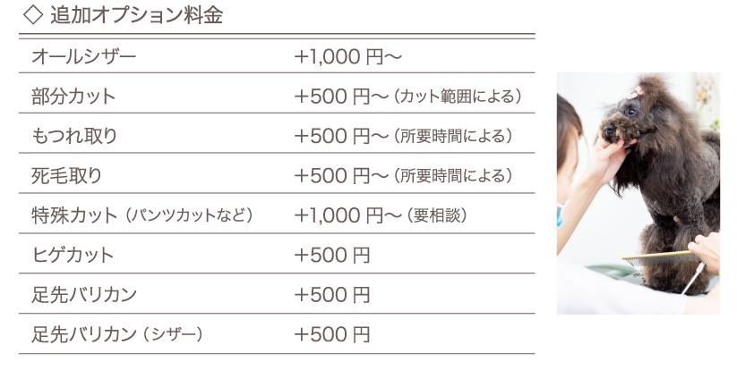 OHANA price_03