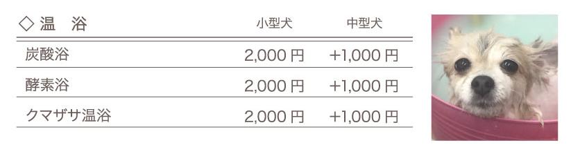 OHANA price_05